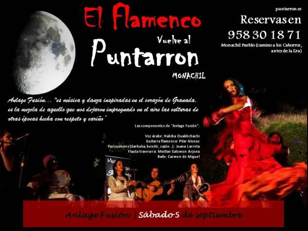 4 sep flamenco